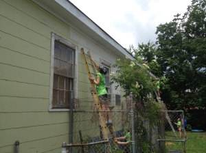 Painting Miss Colleen's house in New Orleans.
